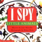 1歳代から楽しめるミッケ!「I Spy Little Animals」★動画有
